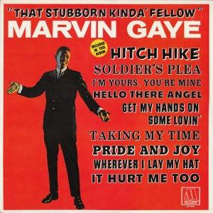 marvin - stubborn